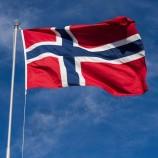 Norway National Flag Banner Norwegian Flag Polyester