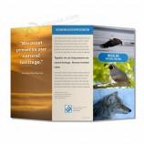пользовательские дешевые A3 A4 A5 брошюра / буклет / листовки / печать каталога