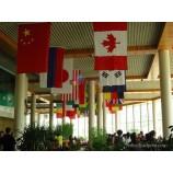 Wholesale Restaurant Decorative National Hanging Flags