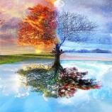 Четыре сезона Древо жизни на заказ ручной работы Художественное масло Абстрактная декоративная настенная к